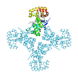 Molmil generated image of 3eb4