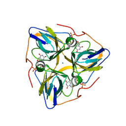 Molmil generated image of 3ehw