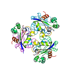 Molmil generated image of 3elh
