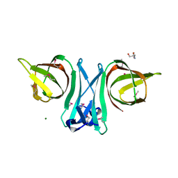 Molmil generated image of 3eo6