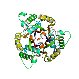 Molmil generated image of 3ern