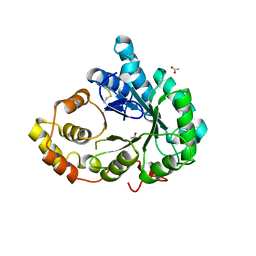 Molmil generated image of 3fjn