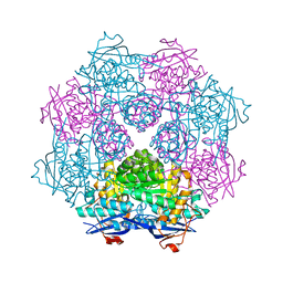 Molmil generated image of 3fvd