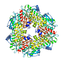 Molmil generated image of 3fvr