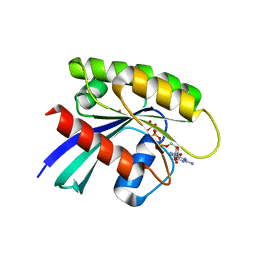 Molmil generated image of 3gft