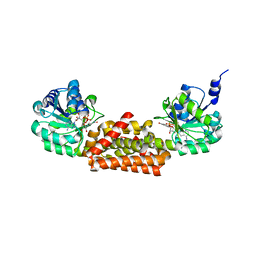 Molmil generated image of 3ggg