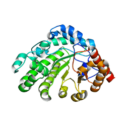 Molmil generated image of 3gvv