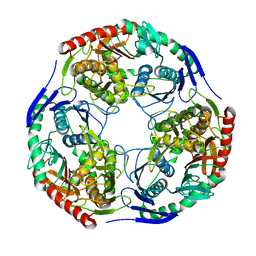 Molmil generated image of 3h1c