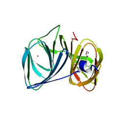 Molmil generated image of 3h7y