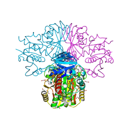 Molmil generated image of 3h9e
