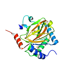 Molmil generated image of 3hqr