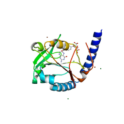 Molmil generated image of 3hy3