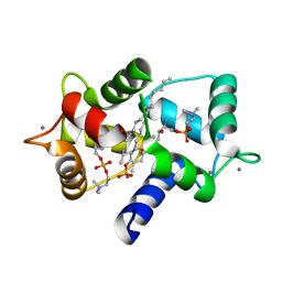 Molmil generated image of 3if7