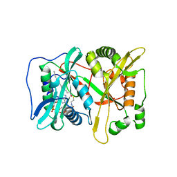Molmil generated image of 3iu1