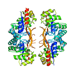 Molmil generated image of 3iwp