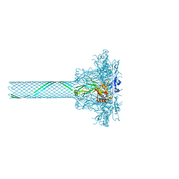 Molmil generated image of 3j9c