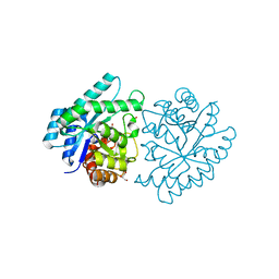 Molmil generated image of 3ju2
