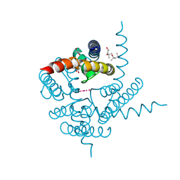 Molmil generated image of 3k06