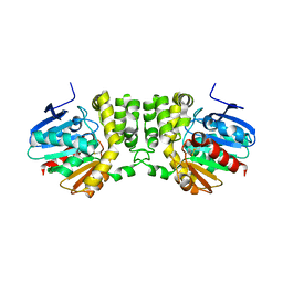 Molmil generated image of 3kd2