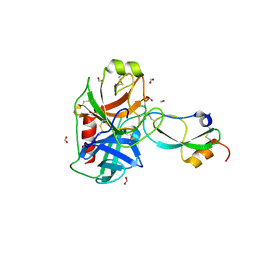 Molmil generated image of 3l3t