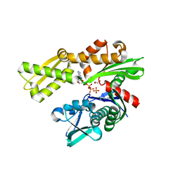Molmil generated image of 3l4i