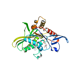 Molmil generated image of 3l9h