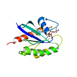 Molmil generated image of 3law
