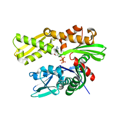 Molmil generated image of 3ldl