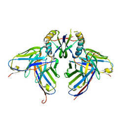 Molmil generated image of 3lh2