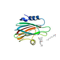 Molmil generated image of 3lim