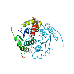 Molmil generated image of 3lpu