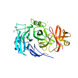 Molmil generated image of 3lv4