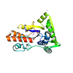 Molmil generated image of 3lvu