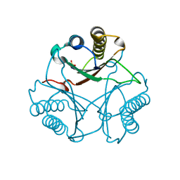 Molmil generated image of 3mf8