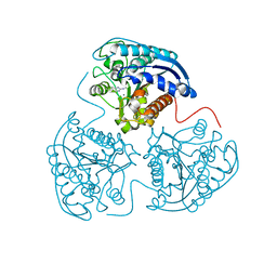 Molmil generated image of 3mfv