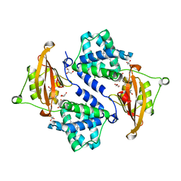 Molmil generated image of 3mg3