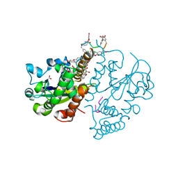 Molmil generated image of 3mg9