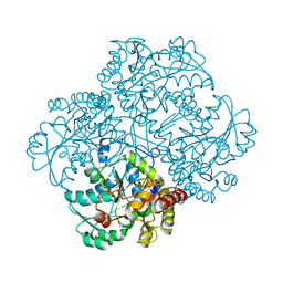Molmil generated image of 3mkj