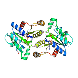 Molmil generated image of 3mle
