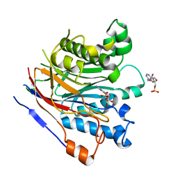 Molmil generated image of 3ngn