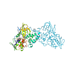 Molmil generated image of 3nk1