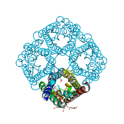 Molmil generated image of 3nka