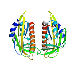 Molmil generated image of 3nmp