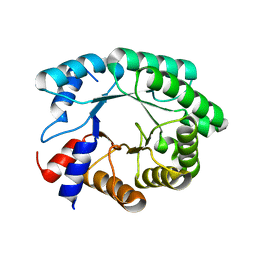 Molmil generated image of 3npv