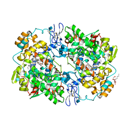 Molmil generated image of 3ntb