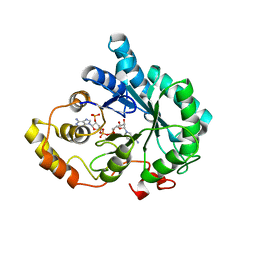 Molmil generated image of 3o3r