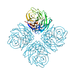 Molmil generated image of 3o9k