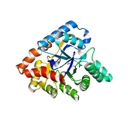 Molmil generated image of 3orw