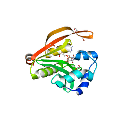Molmil generated image of 3owc