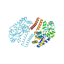 Molmil generated image of 3p7i